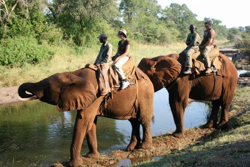 Travel, Tourism, Digital Marketing, Harare, Zimbabwe